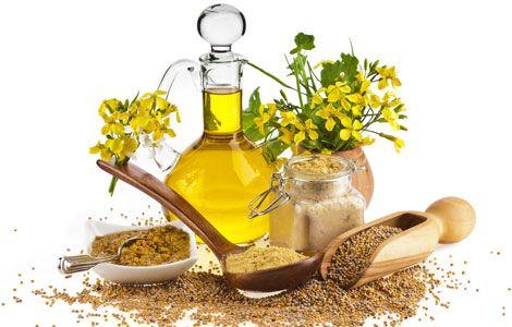 Гірчичне масло властивості і протипоказання