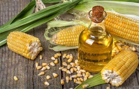 Кукурудзяна олія корисні властивості і протипоказання