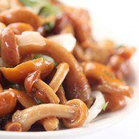 Маринування опеньків, рецепт смачних і корисних грибів