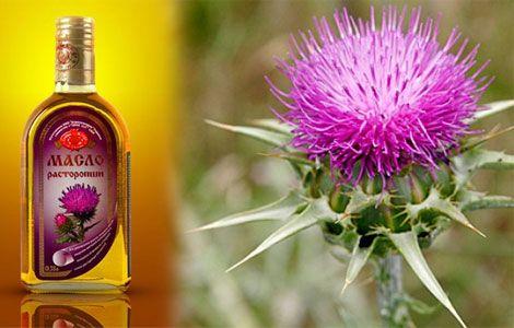 Олія розторопші корисні властивості і протипоказання