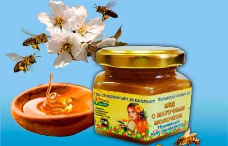 Мед з маточним молочком корисні властивості