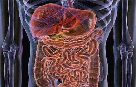 Очищення кишечника народними засобами