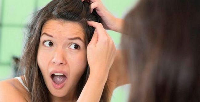 Причини передчасного посивіння волосся і методи лікування