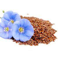 Користь і шкода насіння льону