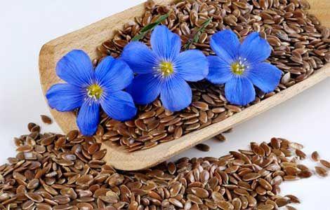 Насіння льону застосування і що воно лікує