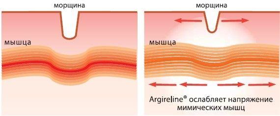 зміцнення волосся реп`яхову олію
